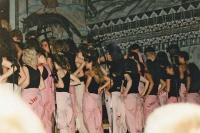 Vampigt och vågat 1991-1
